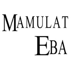 Nang Gabing Mamulat si Eba (1996)