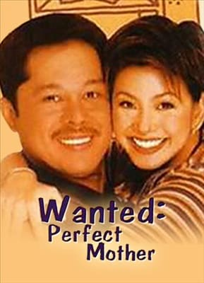 Wanted: Perfect Mother 19960508