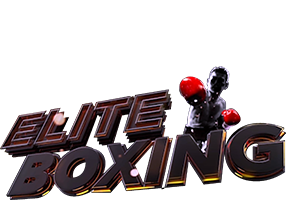 elite-sports-boxing-series