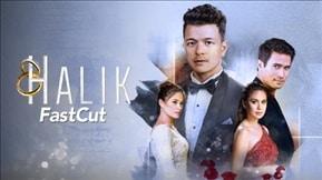 Halik Fast Cut 20181110