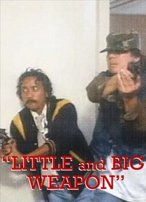 Little & Big Weapon 19900614
