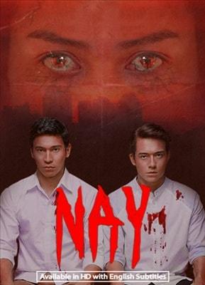Nay 20171113