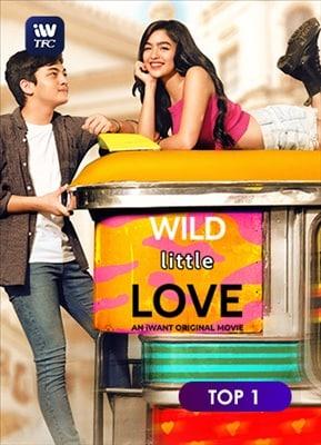 Wild Little Love 20191123