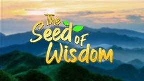 The Seed of Wisdom 20210909